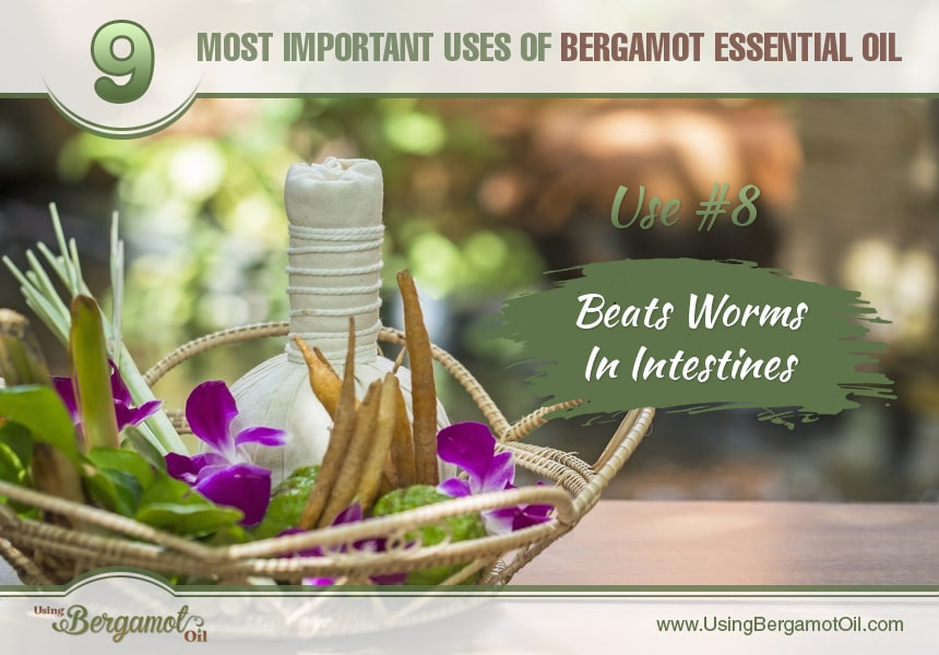 bergamot oil uses and benefits